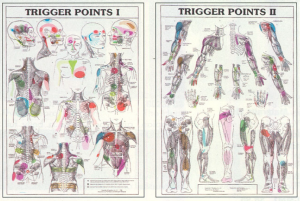 triggerpoints 2